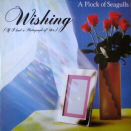 """A Flock Of Seagulls - Wishing (If I Had A Photograph Of You) (12"""", Single)"""